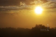 雲越しの朝陽