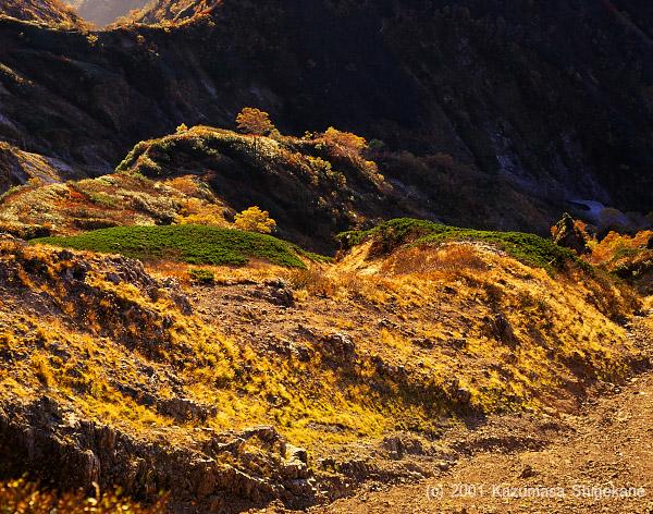 秋色に染まる白岳沢