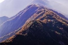 秋の遠見尾根