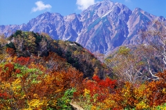 秋に五竜岳へ向かう