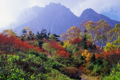 西遠見山の紅葉