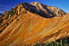 秋色の五龍岳