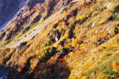 秋の五龍岳
