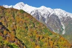 冠雪した五龍岳