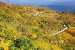 秋色の地蔵の頭自然園