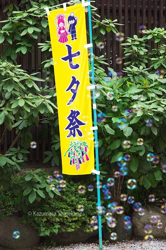 所澤神明社 七夕祭り
