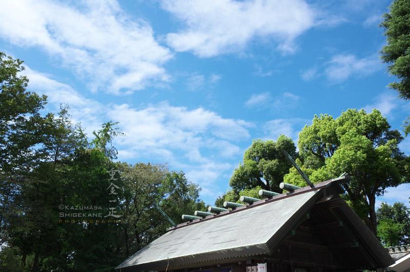 所澤神明社 例祭 秋晴れ