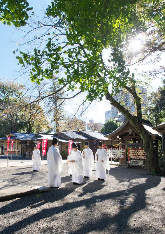 所澤神明社 大嘗祭に伴う臨時大祓