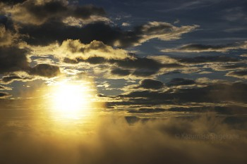 白馬五竜【星空と高山植物と風景の撮影ツアー】1回目催行 d20150720-034
