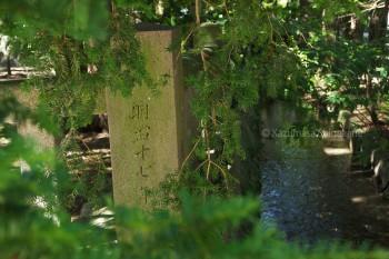 穂高神社 d20150721-052