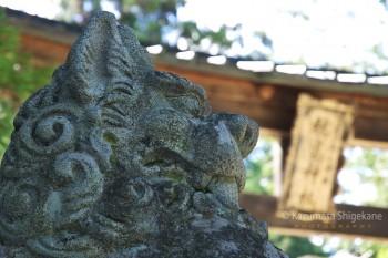 穂高神社 d20150721-071