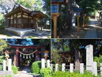 白鬚神社(埼玉県鶴ヶ島市) d20151025-009a