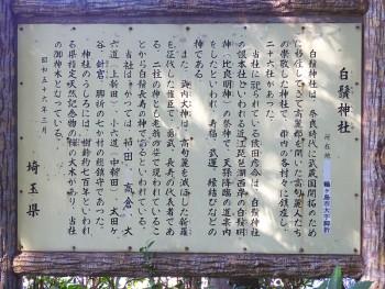 白鬚神社(埼玉県鶴ヶ島市) d20151025-010