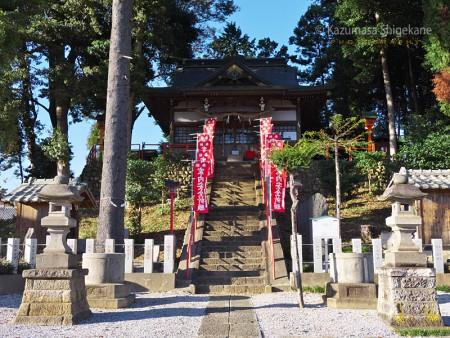 勝呂神社(埼玉県坂戸市) d20151025-059