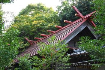 越生神社 d20151101-075