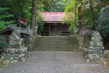 越生神社 d20151101-139