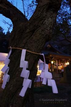 所沢市 北野天神社 d20160101-092
