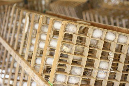 蔟(まぶし)に作られた繭・所沢市北野南の養蚕農家