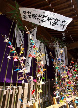 北野天神社 例祭 ふうじ
